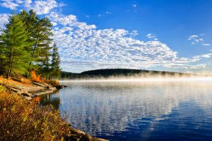 With its 2450 lakes, Algonquin Park is a true natural paradise.