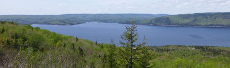 On the road in Eastern Canada - Interview with a CarDelMar Associate - Part I