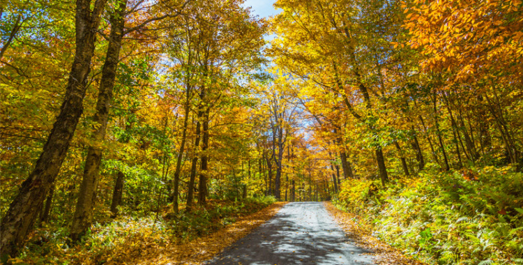 An autumn road trip: New England in the north-eastern USA